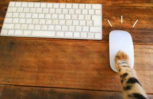 マウス操作は左クリックだけでいいの?始めは混乱を避けるため極端で大丈夫